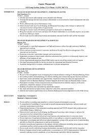 Head Business Development Resume Samples | Velvet Jobs New Business Development Resume Samples Velvet Jobs 7 Business Owner Resume Sample Fabuusfloridakeys Development Manager Erhasamayolvercom 93 Objective 011 Mla Format Essay Sample Example Writing Director Strategy Manager Guide 12 Mplates Pdf Sales Representative Free 2019 Program Finance Fpa Devops