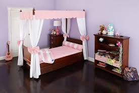 Twin Canopy Bed Drapes by Bedroom Ideas Marvelous Girls Princess Canopy Toddler Cinderella