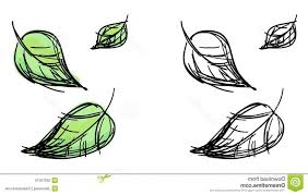 Vector Sketch Falling Leaves Black White Colorful Green Variants