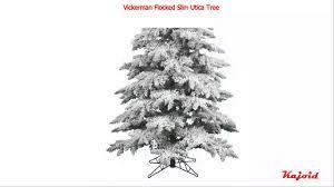 Vickerman Flocked Christmas Tree by Vickerman Flocked Slim Utica Tree 7 5 Feet Youtube