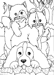 Lovely Cats And Dogs Coloring Pages 81 For Books With