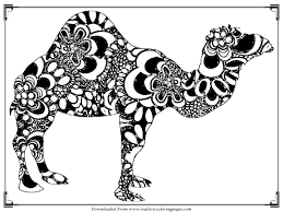Free Printable Camel Coloring Pages For Adult