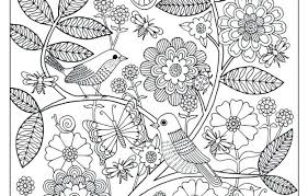 Full Image For Secret Garden Coloring Pages Completed Finished Lifes A
