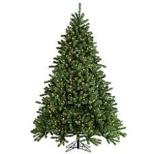 Fred Meyer Ballard Christmas Trees by Best Selling Christmas Trees Hsn