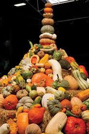 Pumpkin Farm Illinois Best by 15 Best Heirloom Pumpkins Images On Pinterest Pumpkins