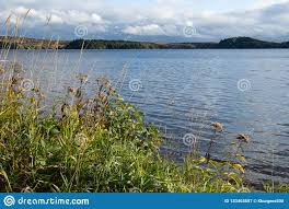 100 Mary Lake Ontario Huntsville Canada Stock Image Image Of Hill