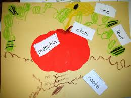 Lumpkin The Pumpkin by Mrs Shelby U0027s Kindergarten Class Pumpkin Fun