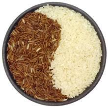 cuisine macrobiotique guide complet cuisine macrobiotique