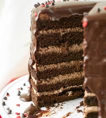 Chocolate Mousse Cake 15