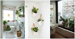 Plants In Bathroom Images by Plants In Bathroom Design Ideas Home Interior Design Kitchen