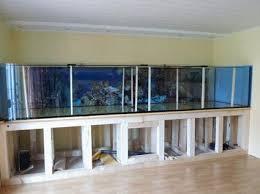 aquarien in übergröße für ihr unternehmen aus havixbeck