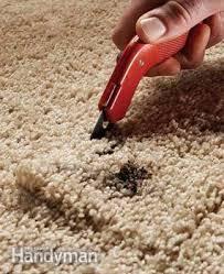 Super Glue On Carpet by Carpet Maintenance Tips 3 Quick Carpet Fixes Family Handyman
