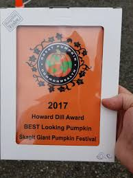 Atlantic Giant Pumpkin Growing Tips by Daily Hive