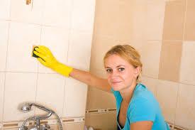 bad putzen mit diesen hausmitteln putzen sie günstig
