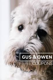 Gus Coupon Code / Print Wholesale Luborzycka Do My Own Pest Control Coupon Coupon Code Tower Hobbies October 2018 Store Deals Toywiz Free Shipping Promo Code No Minimum Spend Home Capitol Cleaners Dover De Coupons Mlb Shop Online Promo Gus Print Whosale Rx For Suboxone Koi Scrubs Discount Tire Magnolia Street Tallahassee Florida Cisco Shabby Apple Active Coupons Stuffed Safari Printable Cracker American Pearl Get H Mart Book Collage Com Codes