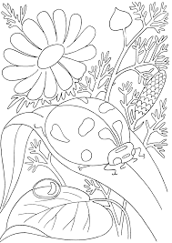Ladybug Nature Coloring Pages