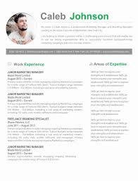 100 Free Professional Resume Templates Template Word 2 Column Cv Alexandrasdesignco