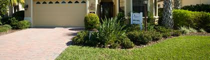 Carpet Grass Florida by Choosing A Lawngrass Uf Ifas Extension