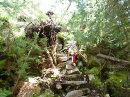 100 Wildcat Ridge