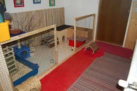 freilaufgehege im wohnzimmer kaninchen