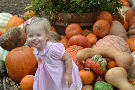 Pumpkin Patch With Petting Zoo by Blog Archives Growing Up Guinn