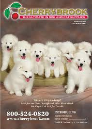 Great Pyrenees Excessive Shedding by Cherrybrook Catalog By Graphicus Design Issuu
