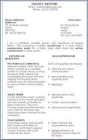 Online Resume Examples Hybrid From Menu Forward Skills Based Digital Marketing Director