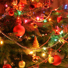 Christmas Tree Species Canada by Christmas Tree Care Missouri Department Of Conservation