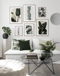 monstera fever bilderwand