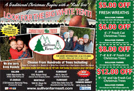 Fresh Christmas Trees Types by Sullivan Farms