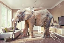 großer elefant und der fall bier im wohnzimmer 3d konzept