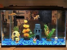 Spongebob Aquarium Decorating Kit by Bottom Freshwater Aquarium Build Album On Imgur