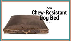 kong chew resistant heavy duty pillow bed review mini husky lovers