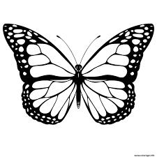 Coloriage Papillon 3 Dessin