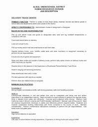 100 Truck Dispatcher Job Description Resume Shahrvandemrouzcom