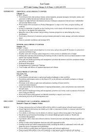 100 Agile Resume Product Owner Samples Velvet Jobs