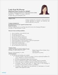 What Is A Resume Title Examples Lovely Pdf Beautiful Best 0d