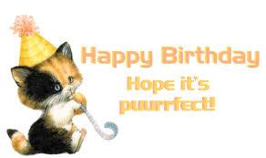 Happy birthday animated cat photo 8