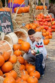 Flower Mound Pumpkin Patch Flower Mound Tx by Saddlewood Homes Coming To Flower Mound Pumpkin Patch
