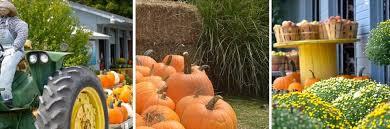 Pumpkin Patch Fayetteville Arkansas by Fresh Fruit U0026 More All Season Long Vanzant Fruit Farms In Lowell Ar
