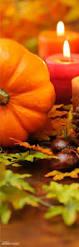 Kenova Pumpkin House 2016 by 3494 Best Autumn Harvest Thanksgiving U0026 Halloween Images On