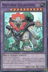 Yugioh Gagaga Deck 2016 by Pin By Alena Marenfeld On Yu Gi Oh Cards Part 43 Pinterest