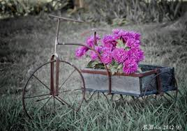Rustic Planter Pink Flowers Flower Picture Design