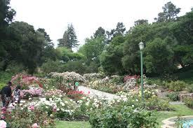 Oakland Rose Garden