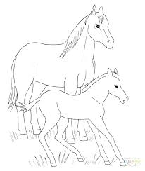 Coloring Pages Of Horses Jumping Horse Realistic