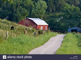 Narrow Country Lane Running Past Small Hillside Farm With Red Barn ... Farm House 320 Acres Big Red Barn For Sale Fairfield The At Devas Haute Blue Grass Vrbo Fair 60 Decorating Design Of Best 25 Barns Ideas On Pinterest Barns Country And Indiana Bnsfarms Etc A In Water Color Places To Visit Nba Partners With Foundation For 2015 Conference I Lived A Dairy Farm When Was Girl Raised Calves 10 Michigan Wedding You Have See Weddingday Magazine