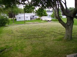 Backyard Grass gogo papa