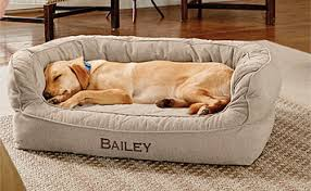 Memory Foam Couch Dog Bed Orvis Memory Foam Couch Dog Bed Orvis