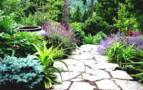 Landscape Ideas For Small Shaded Backyard The Garden Inspirations ... Courtyard On Pinterest Shade Garden Backyard Landscaping And 25 Unique Garden Ideas On Landscaping Spiring Shade Designs Best Plants For Shaded Beautiful Small Flower Bed Ideas Arafen Front Yard Stone Borders Landscape Design Without Grass Sunset Shady Backyard Landscapes Backyards And Rock Satuskaco Buckner Butler Tarkington Neighborhood Association Great Paths Amazing With Gravels Green