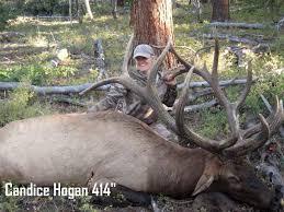 utah s top 10 monster elk of 2014 jdheiner